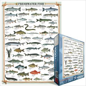 Puzzle Freshwater Fish 1000 pièces Eurographics