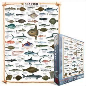 Puzzle Sea Fish 1000 pièces Eurographics