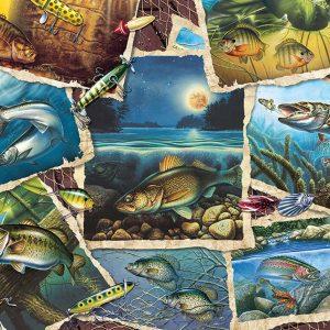 Puzzle Fish Pics 1000 pièces Cobble Hill