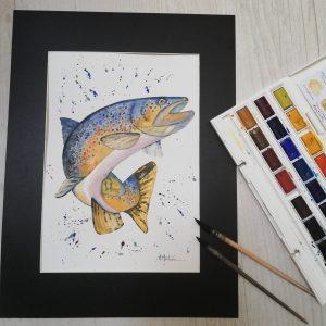 Aquarelle Truite Fario par Maryse Montron