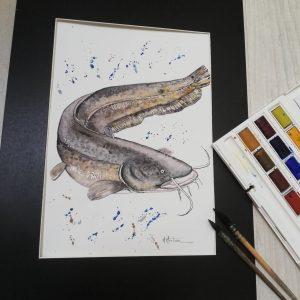 Aquarelle Silure par Maryse Montron