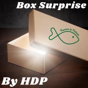 Box Surprise Black-Bass